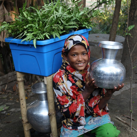 "Plant-based water-purifying system named ""Idea that will change the world"""