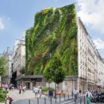 The Oasis of Aboukir green wall by Patrick Blanc