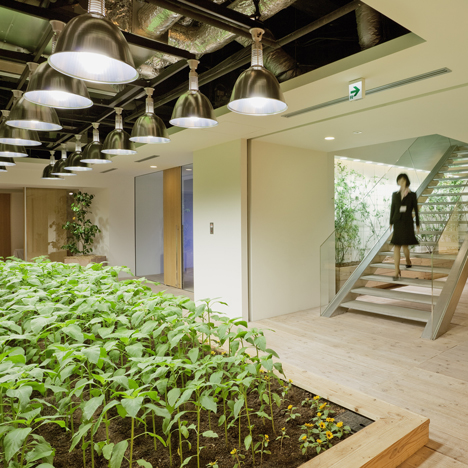 Pasona Urban Farm By Kono Designs