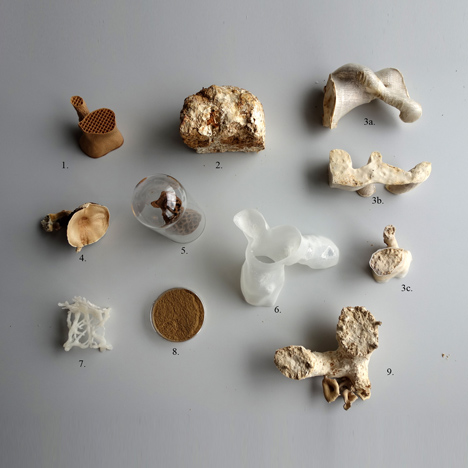 Samples for Mycelium Chair by Eric Klarenbeek