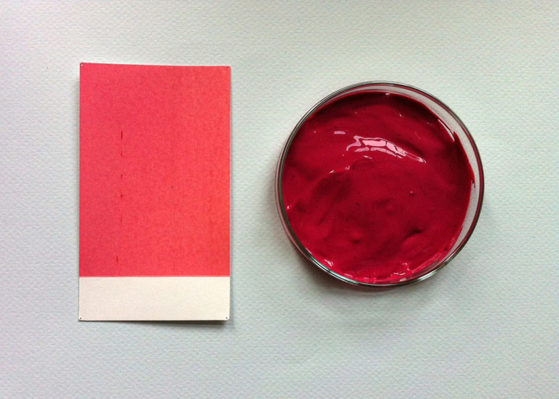 Red Ink Made From Cochineal Insects By Evelien Crooy Design