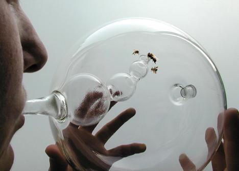 Dezeen_Susana_Soares_Bees_Design_2