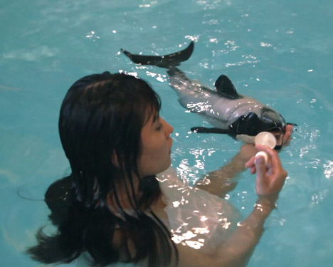I Wanna Deliver A Dolphin by Ai Hasegawa