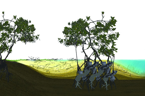 Modular CALTROPe structure forms natural dams by cultivating mangroves