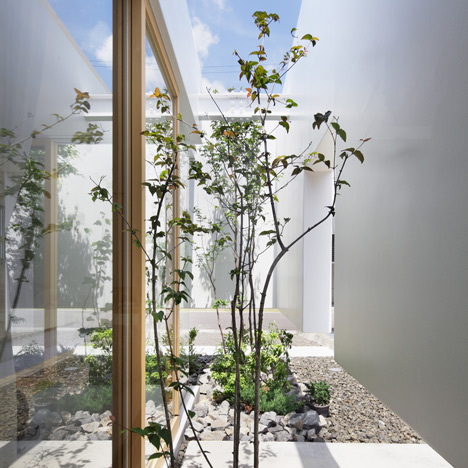Green Edge House by mA-style Architects<br /> has a hidden garden around its perimeter