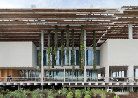 Perez Art Museum Miami by Herzog and de Meuron