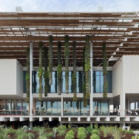 Perez Art Museum in Miami by Herzog & de Meuron