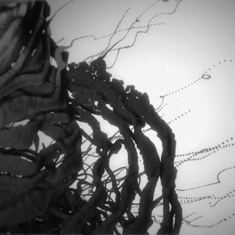 Max Cooper Fragments of Self music video by Nick Cobby