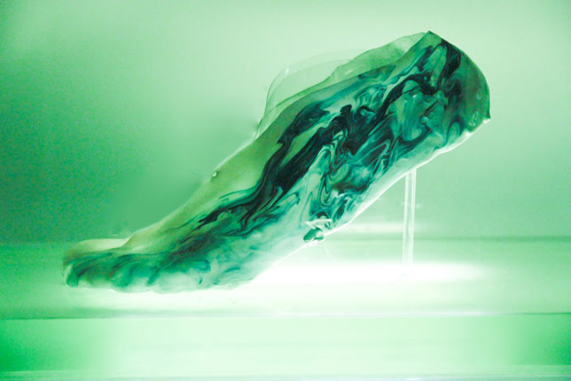 Shamees Aden's Amoeba protocell running shoe