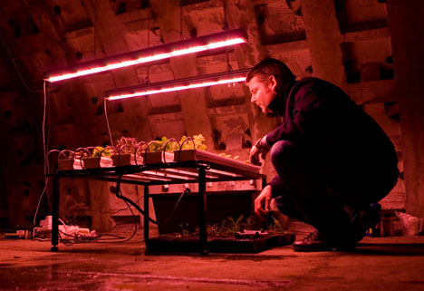 Underground farm built in tunnels 12 storeys beneath London