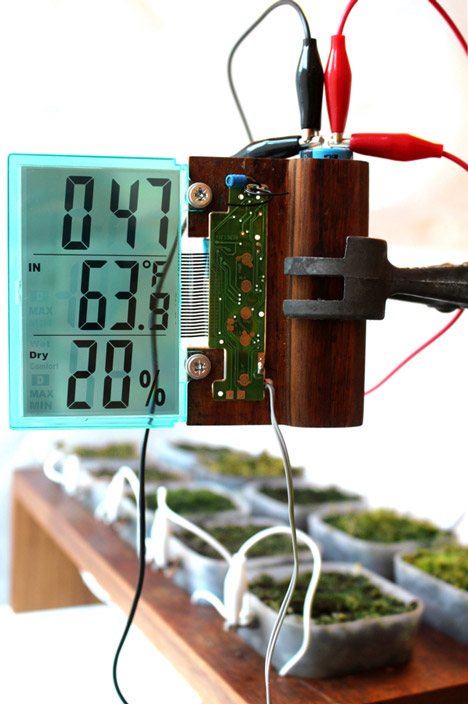Worlds first moss powered radio