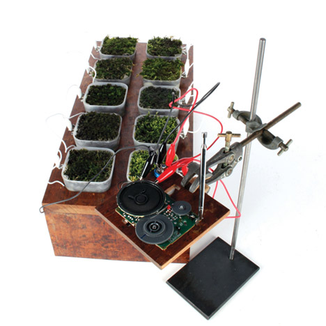 Worlds first moss powered radio