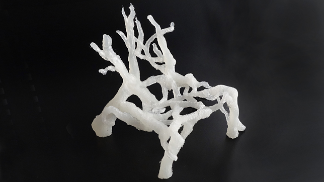 Eric Klarenbeek interview on furniture made from 3D-printed fungus