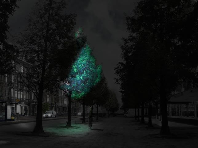 Swop streetlights with luminous trees - Daan Roosegaarde at SXSW