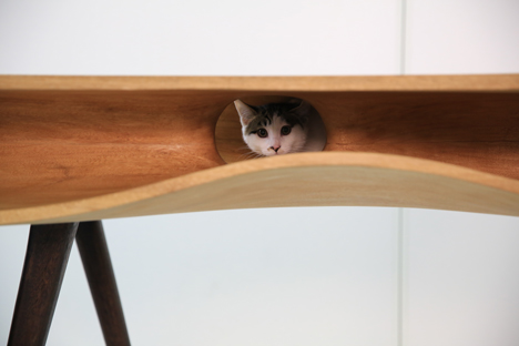 CATable by Hao Ruan_dezeen_4