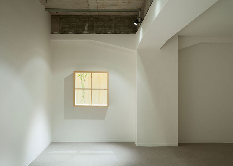 Garden-like office interior by Tsubasa Iwahashi boasts hanging baskets and a wooden shed