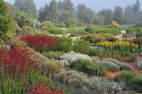 The Australian Garden (Australia), by Taylor Cullity Lethlean + Paul Thompson