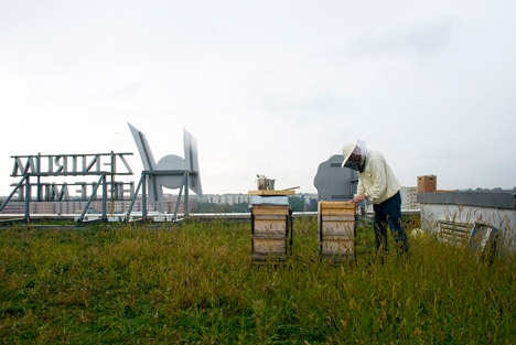 Apiarium beehive by Bettina Madita Bohm