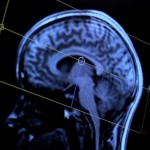 "Brain scanning could be used to design ""scientifically perfect"" products"