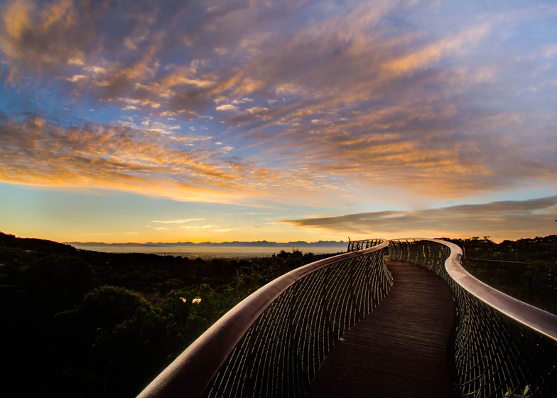 Boomslang walkway by Mark Thomas and Henry Fagan