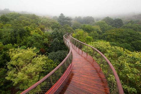 The Boomslang canopy walkway by Mark Thomas and Henry Fagan