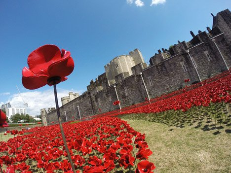 Poppies Surround The Tower Of London To Commemorate World War I