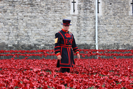 Blood Swept Lands and Seas of Red poppies installation at the Tower of London