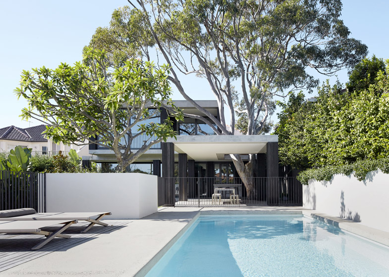 B.E. Architecture designs Sydney house extension around mature gum tree