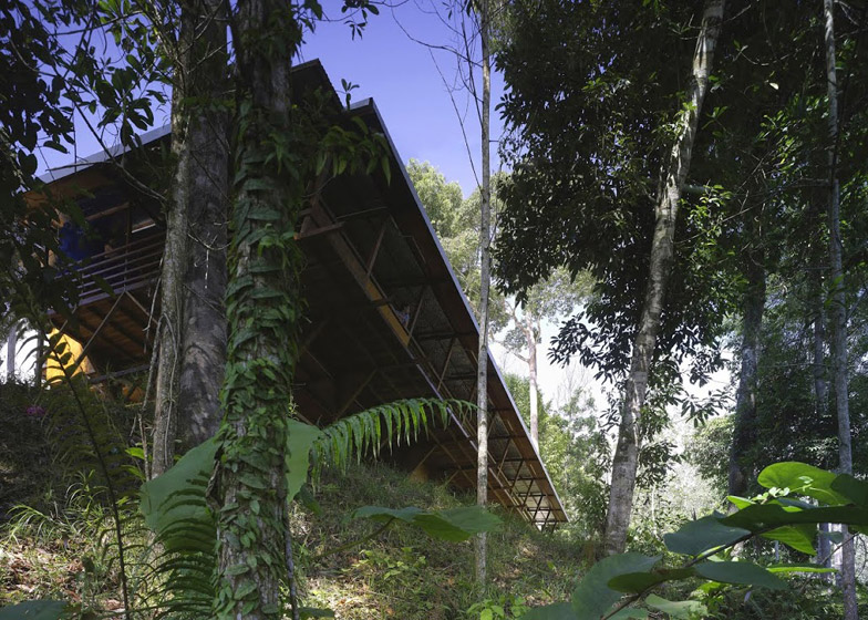 Shelter at Rainforest by Marra and Yeh Architects