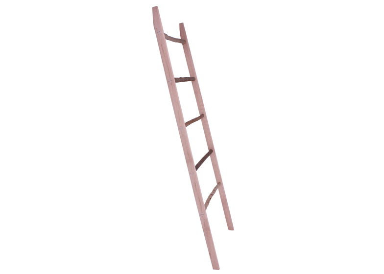 Mop Stick Ladder by Sebastian Cox