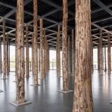 David Chipperfield installs tree trunk columns in Mies van der Rohe's Neue Nationalgalerie