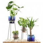 Narcissus vases by New Craft let plants bask in their own reflections