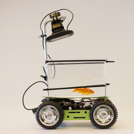 "Studio Diip's goldfish-driven vehicle is designed for ""enhanced pet mobility"""