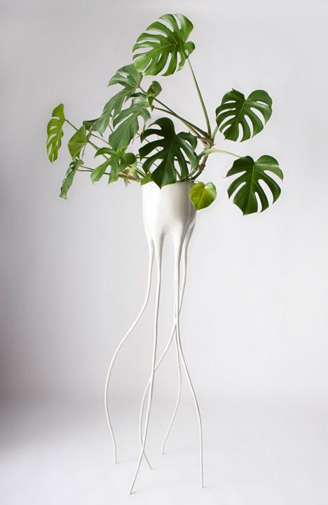 Tim Van De Weerd 39 S Monstera Plant Pots Balance On Spindly Legs
