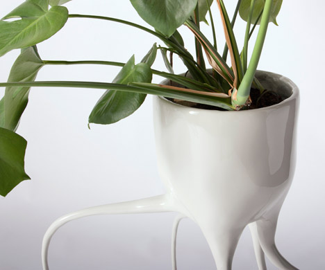 Monstera plant pots by Tim van de Weerd