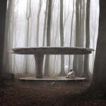 Jägnefält Milton's Forest Pavilion tests new Swedish building law