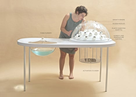 Fungi Mutarium by Katharina Unger