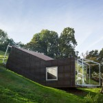 Tick-shaped art studio by Christian Tonko follows the slope of an Austrian hillside