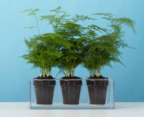 Cube plant pot by Boskke