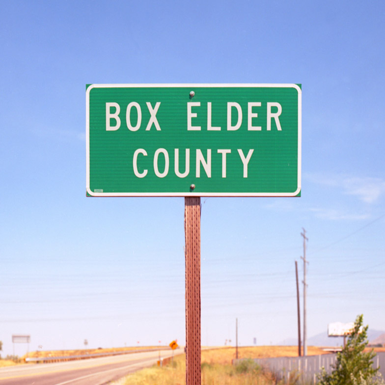 Box Elder by Anthony Gerace