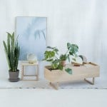 Kristina Dam designs pale oak furniture to incorporate plants