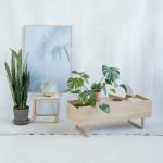 Kristina Dam designs pale oak furniture to incorporate plants