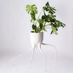 Tim van de Weerd's Monstera plant pots balance on spindly legs