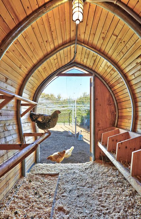 Chicken-Coop-by-Architecture-Research-Office_dezeen_468_6