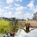 Freshwater bathing pond to open in London's King's Cross