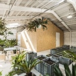 Schemata Architects converts Tokyo factory into artist's studio with an indoor garden