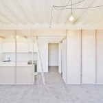 Plywood partitions create rooms within rooms inside two Barcelona apartments