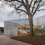 Paris library by Agence Pascale Guédot angles around an old walnut tree