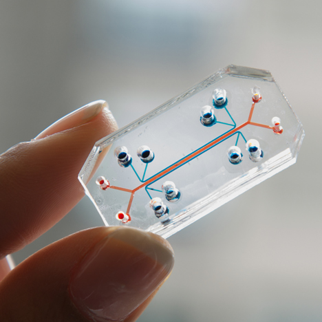 Tiny devices replicate human organs to provide an alternative drug-testing method