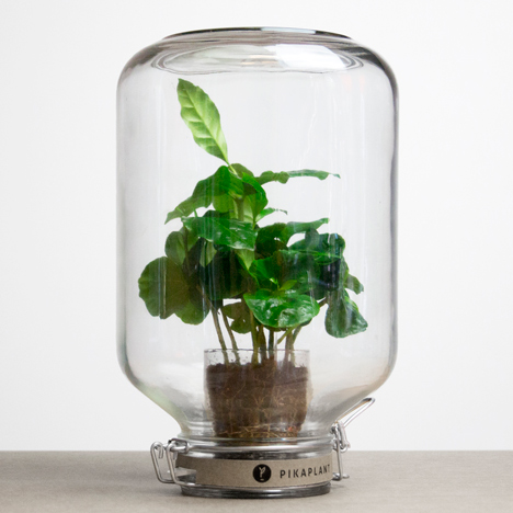 Pikaplant creates self-watering systems for automatic plant maintenance